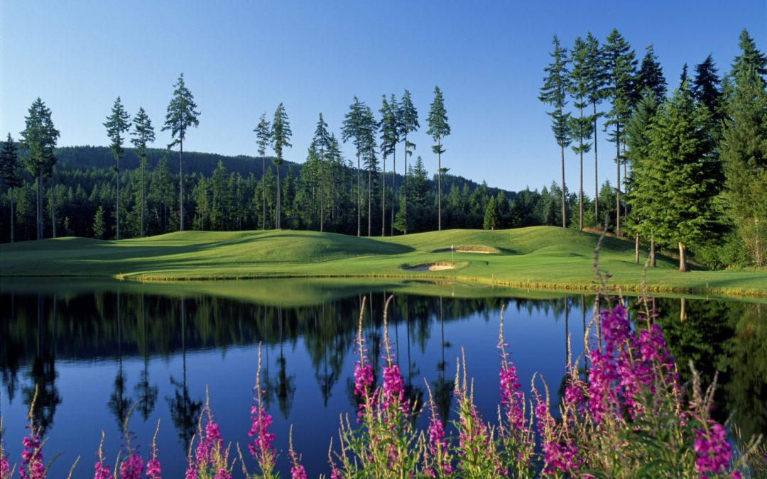 Gold Mountain Golf Course – The Olympic