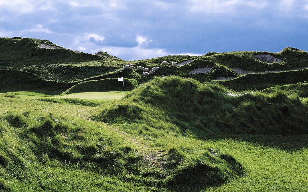 The Irish at Whistling Straits